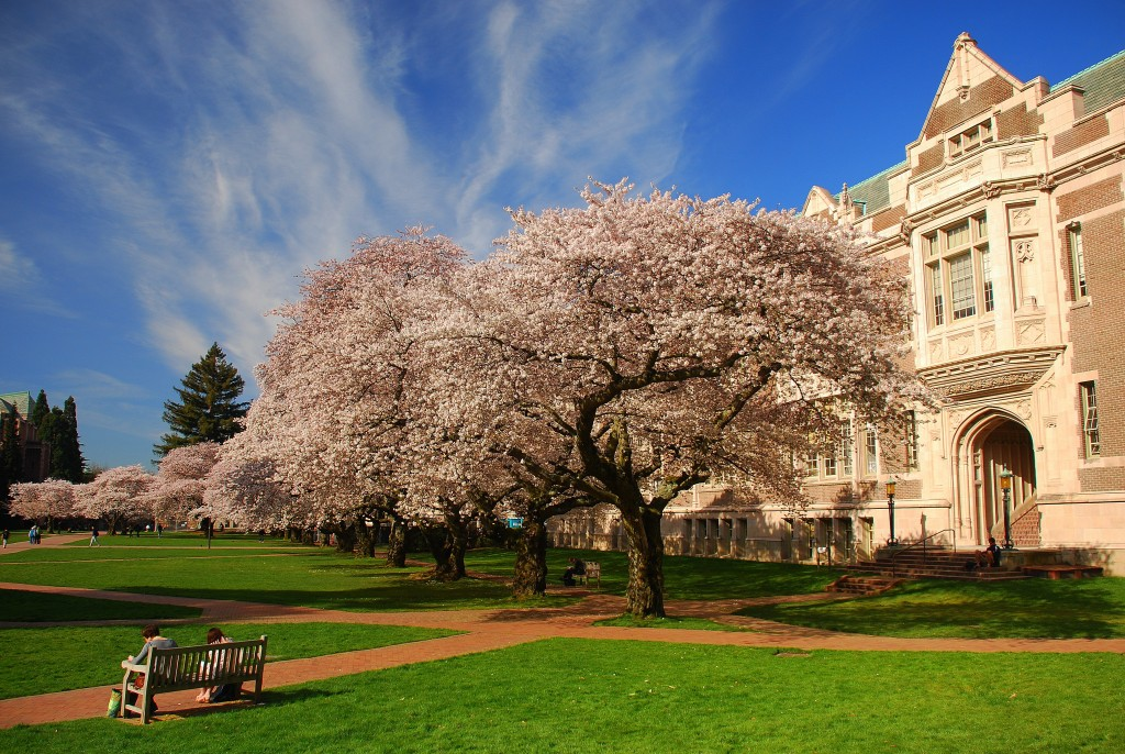 University of Washington Seattle