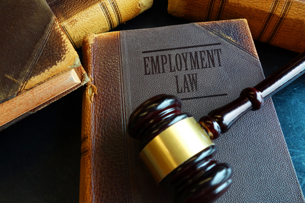 """An """"Employment Law"""" book with a gavel on top of it."""